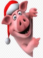 желтая земляная свинья не потерпит хаоса и лентяев