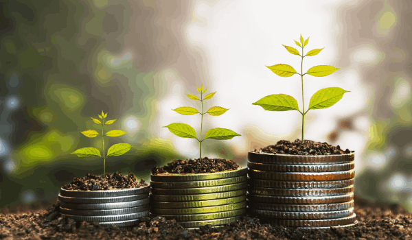 Как растут деньги