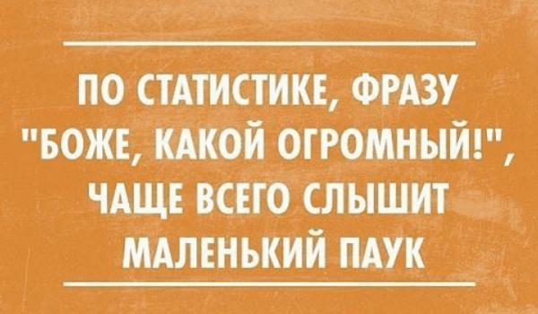 Афоризм